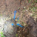 water leak detection back yard indication