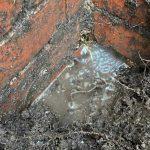 Water Leak Detection Clayton